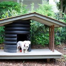 Future dog house