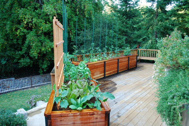 Traditional Deck by Steve Masley Consulting and Design