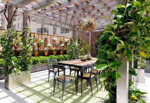 Contemporary Deck by Rikki Snyder