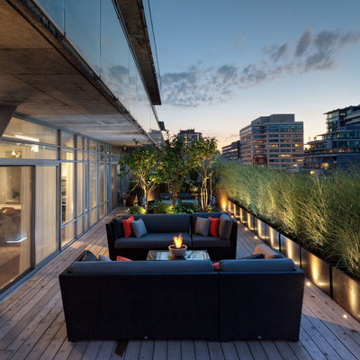 Example of a trendy backyard deck container garden design in Toronto with a roof extension