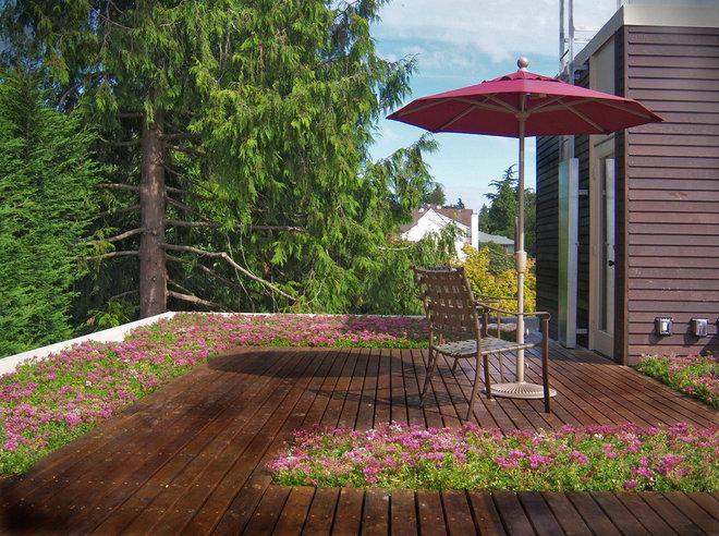 modern deck by Spore Design
