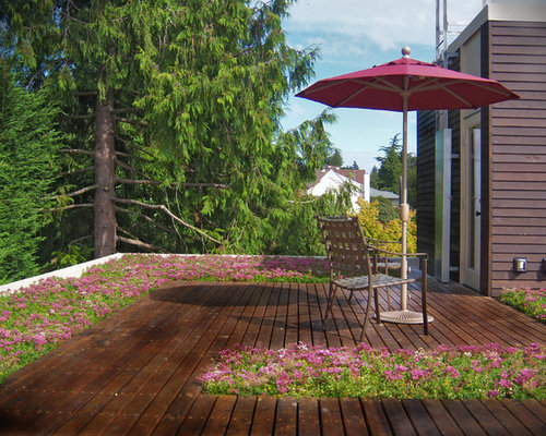 Inspiration For A Contemporary Rooftop Deck Remodel In Seattle