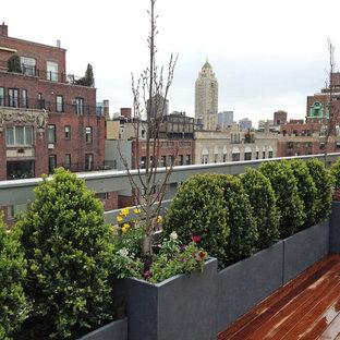 Idee per una terrazza design sul tetto con un giardino in vaso
