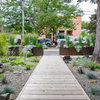 A Toronto Front Yard Gains Style and a Taste of the Southwest