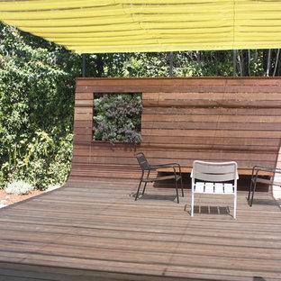 Inspiration för en funkis terrass, med en vertikal trädgård