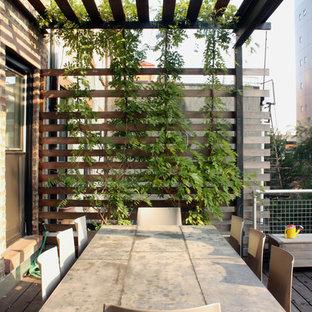 Ejemplo de terraza minimalista, de tamaño medio, en azotea, con jardín de macetas y pérgola