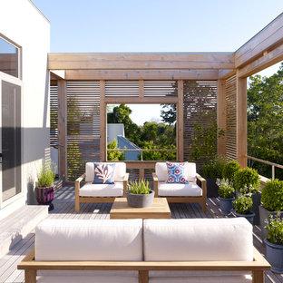 Immagine di una terrazza design dietro casa con un giardino in vaso e nessuna copertura