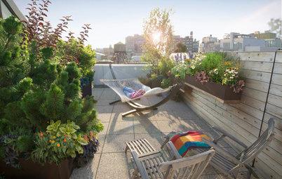 Once a Barren Rooftop, Now a Serene City Getaway