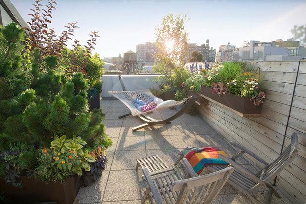 Contemporáneo Terraza y balcón by Todd Haiman Landscape Design