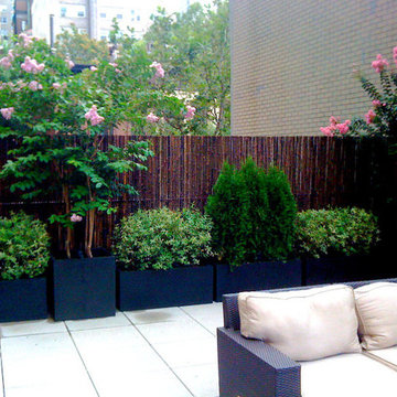 NYC Roof Garden: Bamboo Fence, Terrace Deck, Paver Patio, Container Plants, Sofa