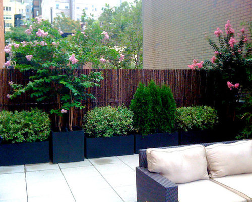 Inspiration For A Large Contemporary Rooftop Deck Container Garden Remodel  In New York