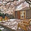 みんなのHouzz:お花見の季節。桜の写真を募集します!