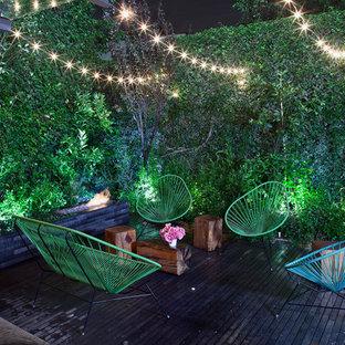 Design ideas for a small contemporary deck in Mexico City with a vertical garden.
