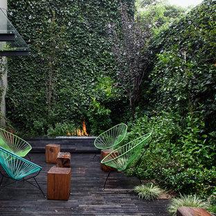 Ejemplo de terraza contemporánea, pequeña, con jardín vertical