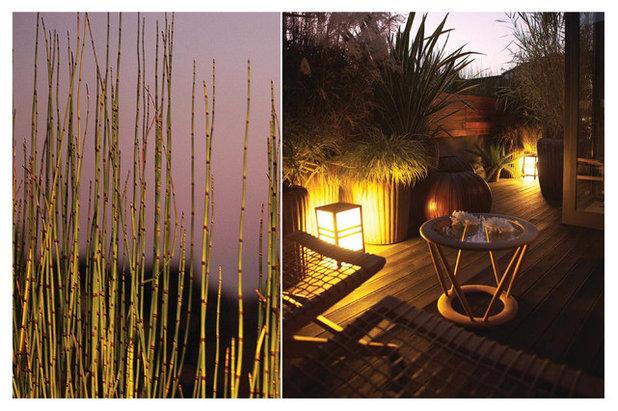 Contemporaneo Terrazza by Gardenridge Living Architecture