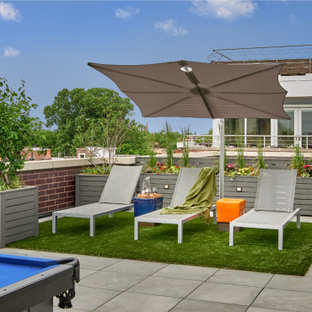 Trendy rooftop deck container garden photo in Chicago with no cover