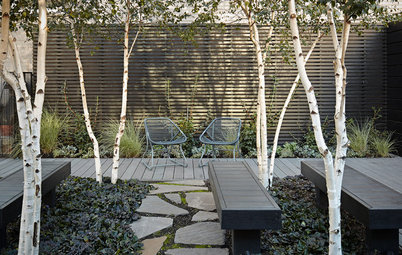 5 Ways to Use Trees to Create a Sensational Garden Space