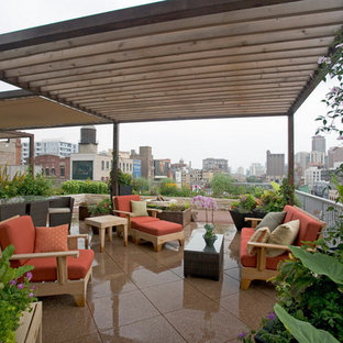 Example of a mid-sized trendy rooftop deck container garden design in Chicago with an awning