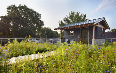 A Sauna and a Native Meadow Garden Elevate a Minnesota Rooftop