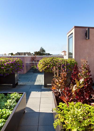 Modern Terrace by Envision Landscape Studio