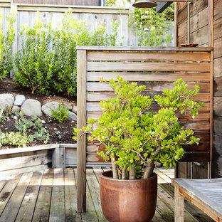 Immagine di una terrazza design dietro casa con nessuna copertura