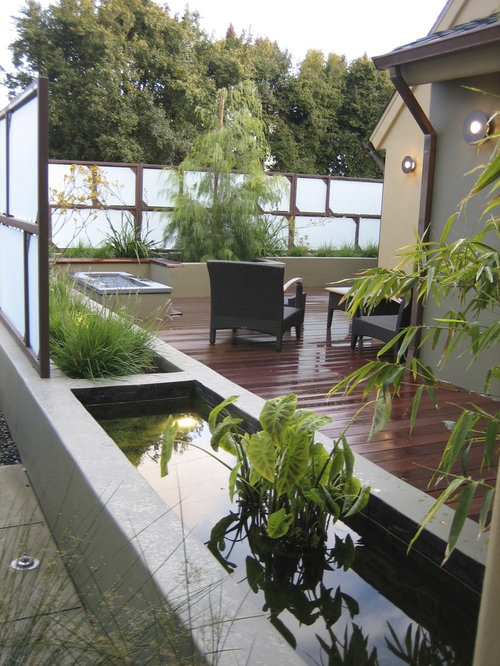 Best raised pond design ideas remodel pictures houzz for Modern garden pond designs