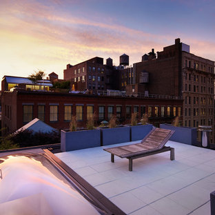 Deck container garden - mid-sized modern rooftop deck container garden idea in New York with no cover