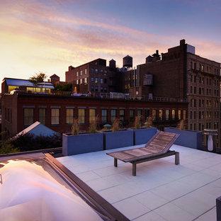 Ispirazione per una terrazza moderna sul tetto e di medie dimensioni con un giardino in vaso e nessuna copertura