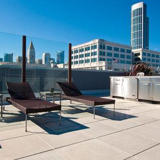 Esempio di una terrazza contemporanea sul tetto e sul tetto