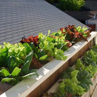 Deck Vegetable Garden Houzz