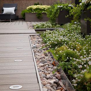 Mittelgroße Moderne Dachterrasse mit Kübelpflanzen in Montreal