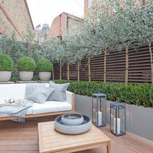 Modelo de terraza contemporánea, pequeña, en patio trasero