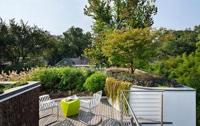 Saviez-vous qu'il existe quatre manières de verdir un toit ?