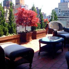 Contemporary Deck by Amber Freda NYC Garden Design