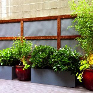 Foto di terrazze e balconi etnici sul tetto con un giardino in vaso