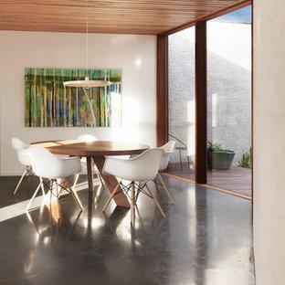 ジーロングの中サイズのコンテンポラリースタイルのおしゃれなダイニング (コンクリートの床、白い壁、暖炉なし) の写真