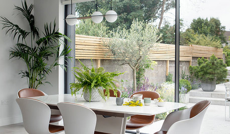 Room Tour: A Light-filled Extension Boosts Open-plan Living