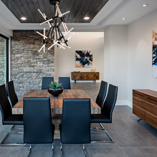 Inspiration for a contemporary gray floor dining room remodel in Phoenix with white walls