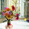 Dutch Houzz: A Run-Down Nursery Estate is Back in Full Bloom