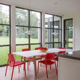 Enclosed dining room - contemporary light wood floor enclosed dining room idea in Boston with white walls