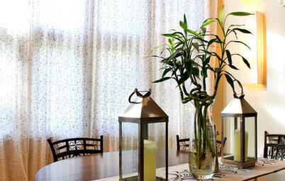 Improve Your Style Fortune With Lucky Bamboo