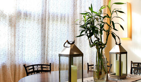 ornamental bamboo fence.htm what can cause a lucky bamboo stalk to turn wrinkly   lucky bamboo stalk to turn wrinkly