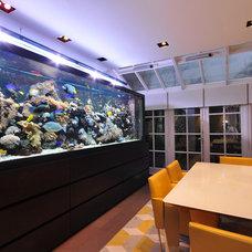 Contemporary Dining Room by Aquarium Architecture