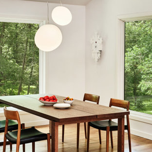 Example of a mid-sized minimalist medium tone wood floor dining room design in New York with no fireplace