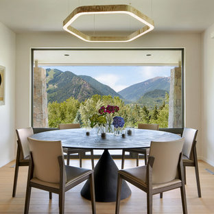 Inspiration for a mid-sized contemporary light wood floor and beige floor dining room remodel in Denver with white walls and no fireplace