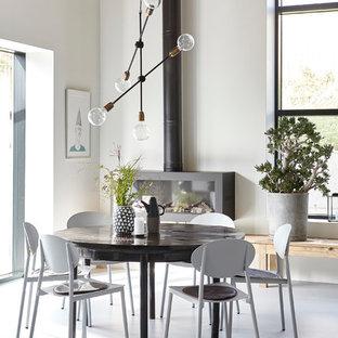 Foto di una sala da pranzo scandinava con pareti bianche, stufa a legna e cornice del camino in metallo
