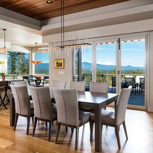 Diseño de comedor clásico renovado, grande, cerrado, sin chimenea, con paredes grises, suelo de madera clara y suelo gris