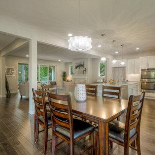 Esempio di una grande sala da pranzo aperta verso la cucina minimal con pareti bianche, parquet scuro, camino classico e cornice del camino in intonaco