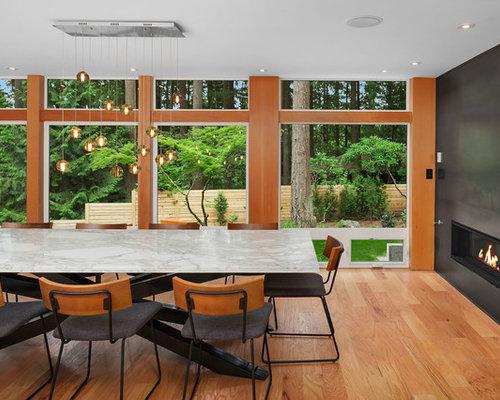 Contemporary Dining Room Ideas contemporary dining room ideas & design photos | houzz
