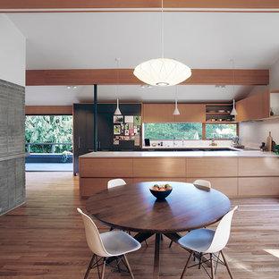 Diseño de comedor vintage, de tamaño medio, abierto, con suelo de madera en tonos medios, paredes blancas, chimenea tradicional, marco de chimenea de hormigón y suelo marrón